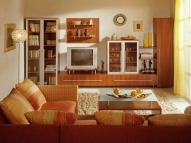 Мебель для гостиной 15
