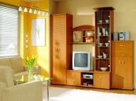Мебель для гостиной 33
